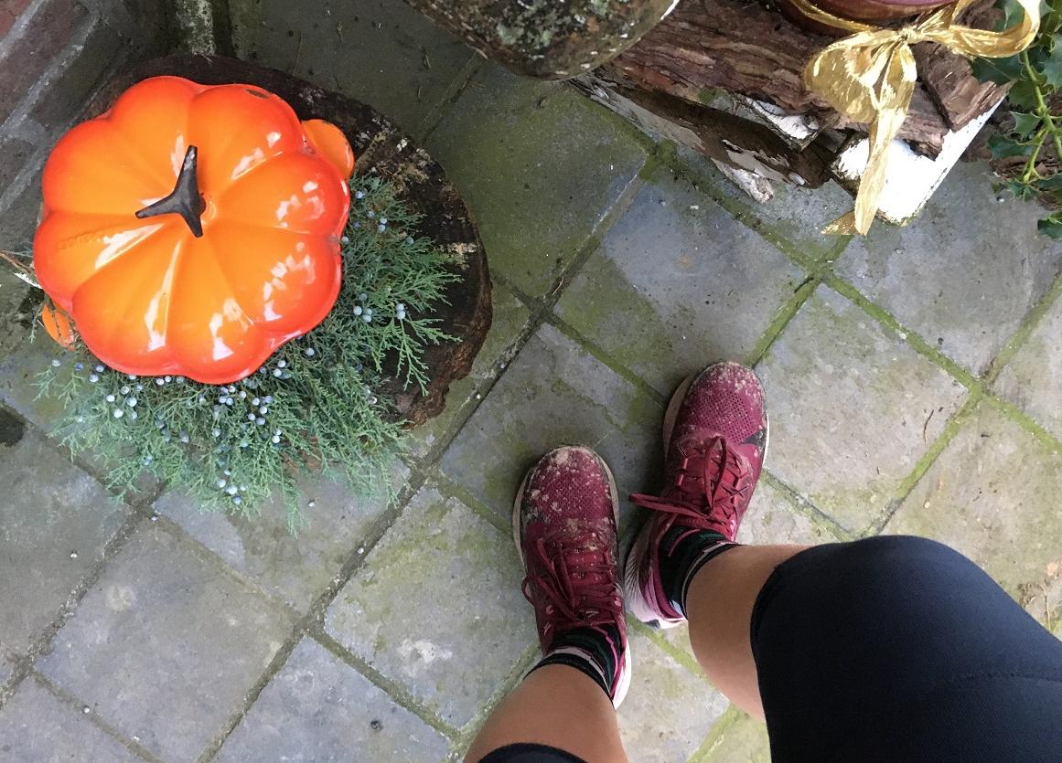 Loperspraat – Mijn eerste 50km